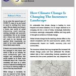 newsletter-Nov2020-thumbnail